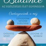balance_final-1